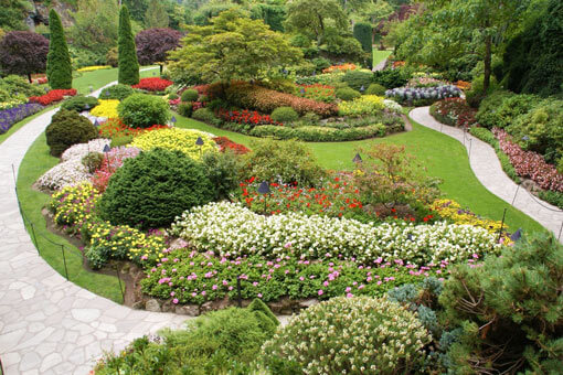 fantastischer-Garten